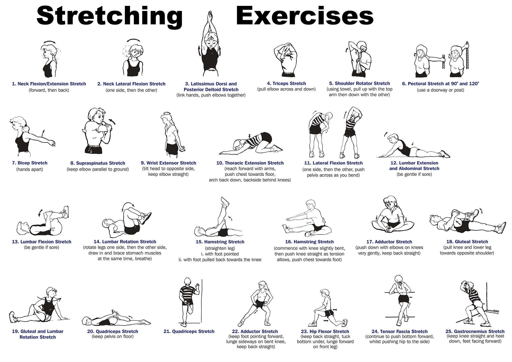 Image result for easy stretch routine