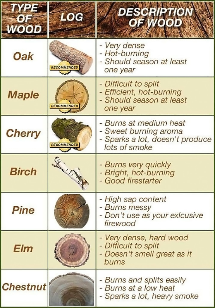 Fire wood types infographic fireplace tinder kindling 2